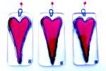 JR Heart 05